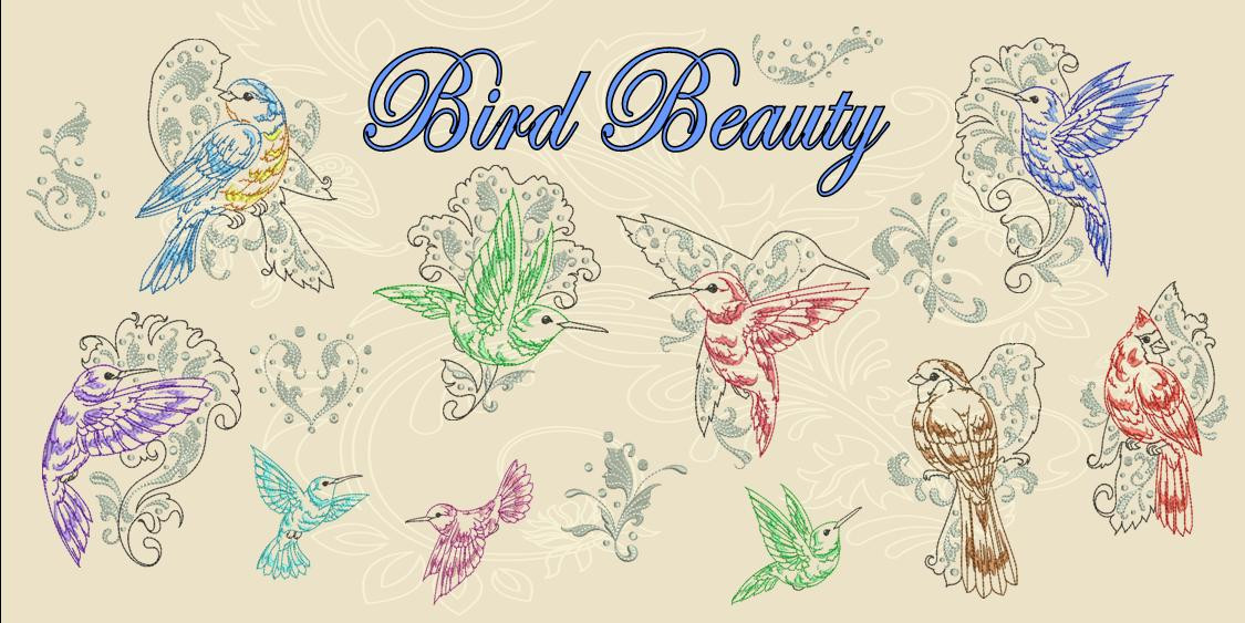 Bird Beauty Banner
