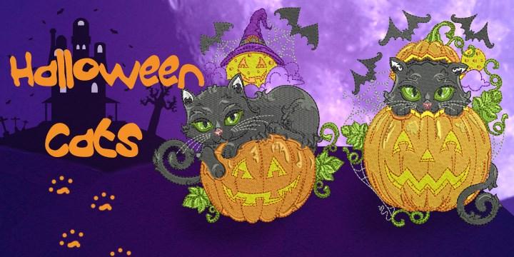 halloween-cats-banner
