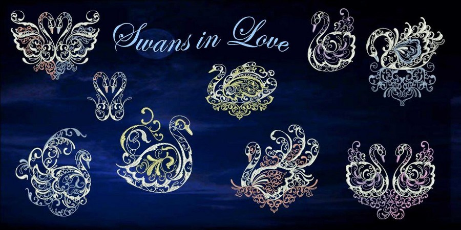 Swans in Love BANNER_900