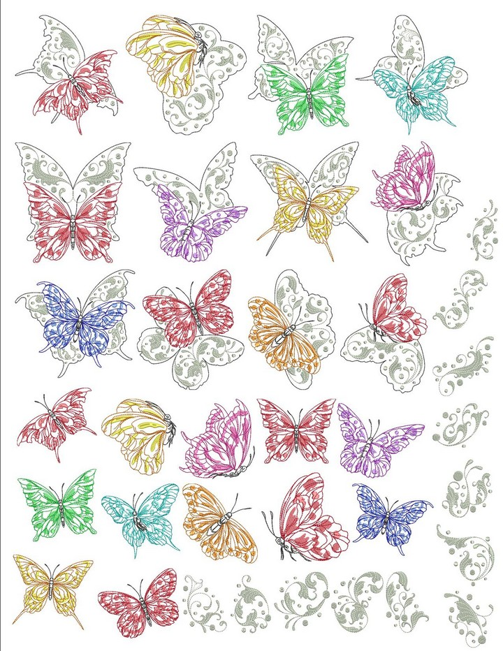 Butterfly Beauty Bundle_900