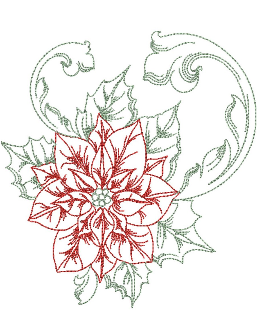 poinsettias-in-color-preview_900