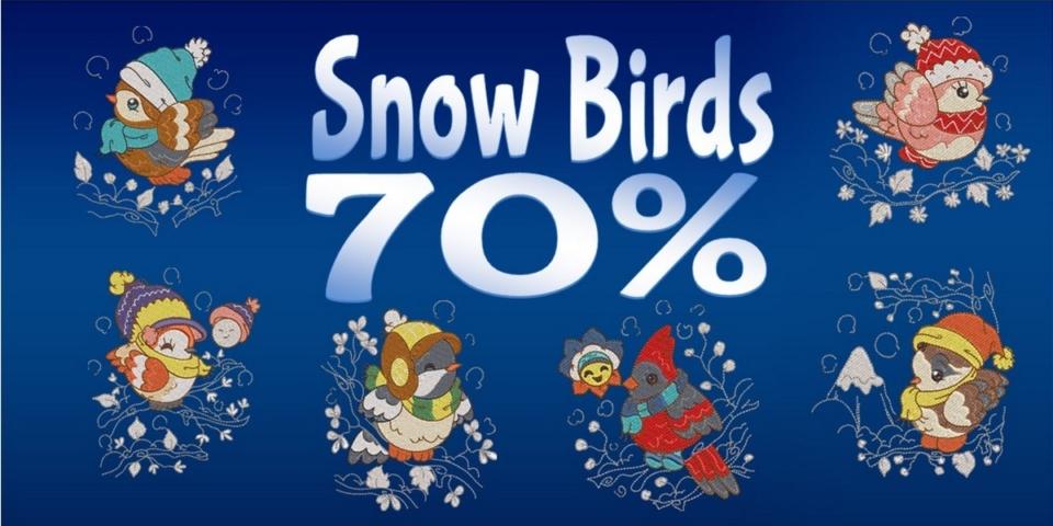 Snow Birds Banner
